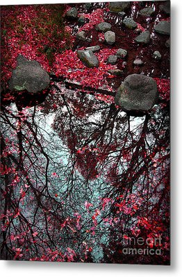 The Heart Of The Forest Metal Print by Eena Bo
