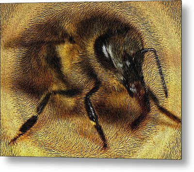 The Killer Bee Metal Print by ISAW Gallery