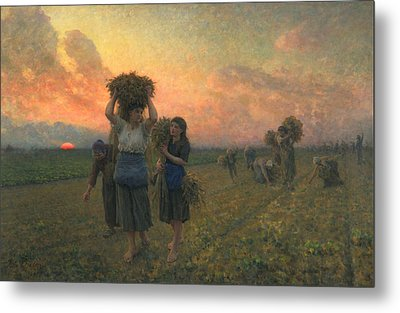 The Last Gleanings Metal Print