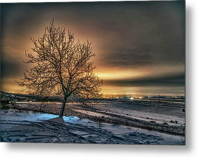 The Lights Of The Rose Valley Metal Print