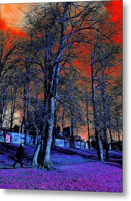 The Long Walk Home Metal Print
