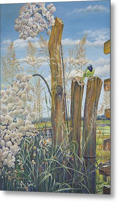 The Lookout, Texas Green Jay Metal Print