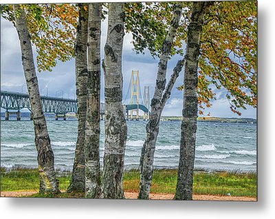 The Mackinaw Bridge By The Straits Of Mackinac In Autumn With Birch Trees Metal Print by Randall Nyhof