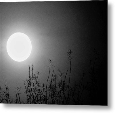 The Moon And The Stars Metal Print by John Glass
