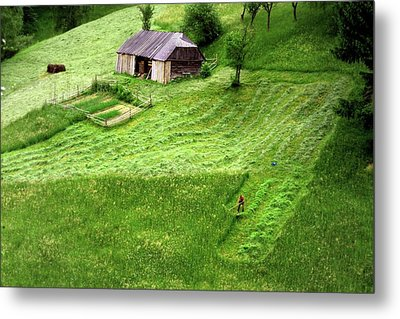 Metal Print featuring the photograph The Mower by Emanuel Tanjala