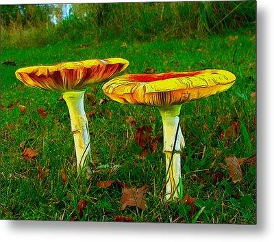 The Mushroom 8 - Da Metal Print by Leonardo Digenio