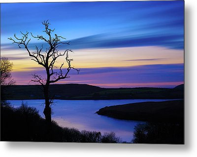 The Naked Tree At Sunrise Metal Print by Semmick Photo