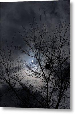 The Nest I Metal Print by Anna Villarreal Garbis