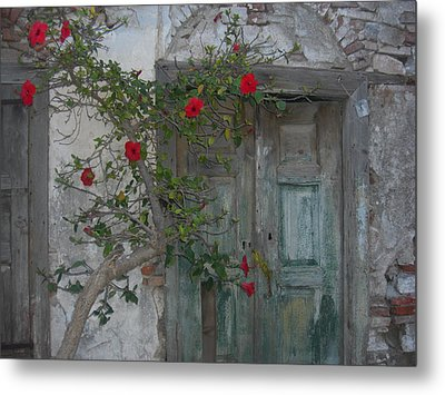 The Old Door And The Rose Bush Metal Print by Wilhelm Terrada