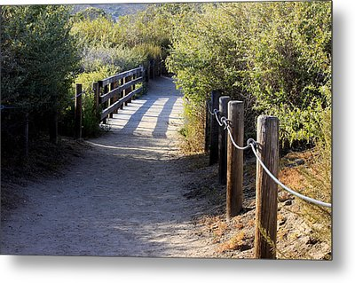 The Path Metal Print by Ivete Basso Photography