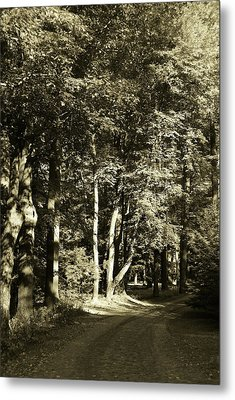 Metal Print featuring the photograph The Path Less Traveled by John Schneider