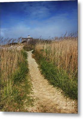The Pathway Home Metal Print by Tom Gari Gallery-Three-Photography