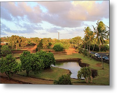 The Pond At Prince Kuhio Park Metal Print by Bonnie Follett