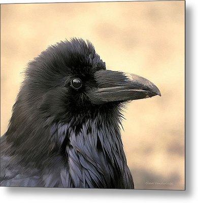 The Raven Metal Print by Clare VanderVeen