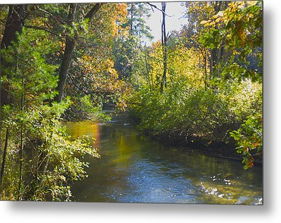 The River  Metal Print by Sheryl Thomas