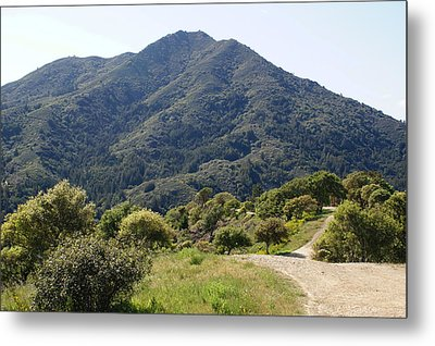 The Road To Tamalpais Metal Print by Ben Upham III