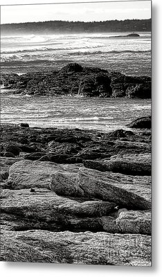 The Rugged Coast Of Maine Metal Print by Olivier Le Queinec