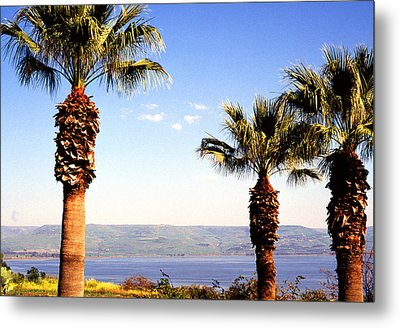 The Sea Of Galilee From The Mount Of The Beatitudes Metal Print by Thomas R Fletcher