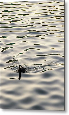 The Simple Life Metal Print