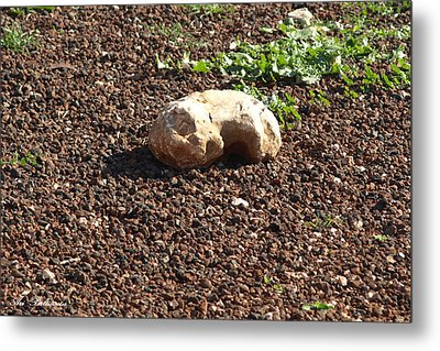 Metal Print featuring the photograph The Sleeping Stone. by Arik Baltinester