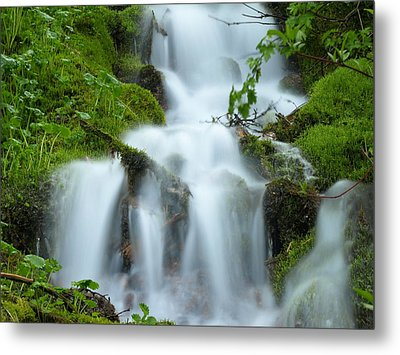 Metal Print featuring the photograph The Slithering Mist by DeeLon Merritt