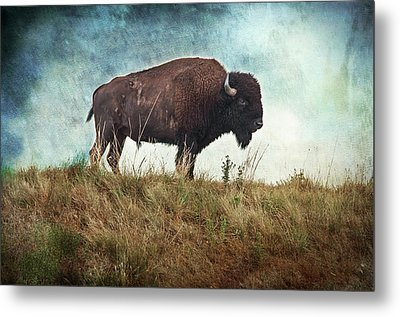 The Stance Metal Print by Tamyra Ayles