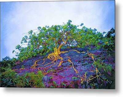 The Stand Metal Print by David Clark