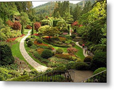 The Sunken Garden At Butchart Gardnes Metal Print by Darlyne A. Murawski