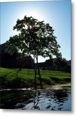 The Tree Of Toho Metal Print