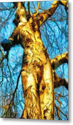 The Tree That Wanted To Be A Woman - Pa Metal Print by Leonardo Digenio