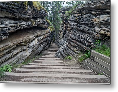 The Unknown Path Metal Print by Alpha Wanderlust