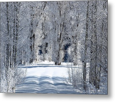 The Untraveled Winter Road Metal Print by DeeLon Merritt