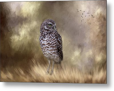 Metal Print featuring the photograph The Watchful Eye by Kim Hojnacki