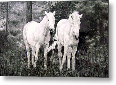 The White Stallions Metal Print