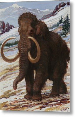 The Woolly Mammoth Is A Close Relative Metal Print by Charles R. Knight