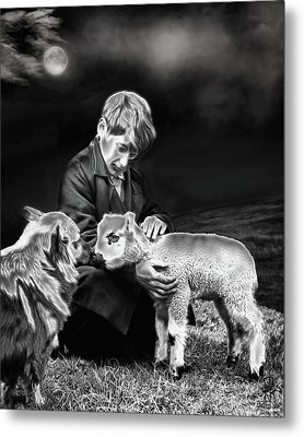 The Young Ones Metal Print by Pennie  McCracken