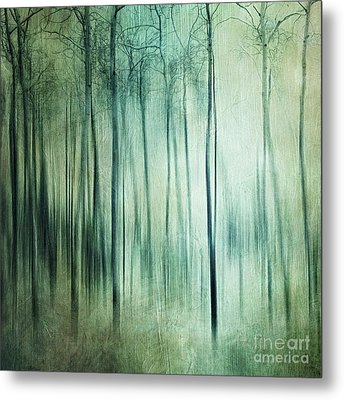 There Is Light Somewhere Metal Print by Priska Wettstein