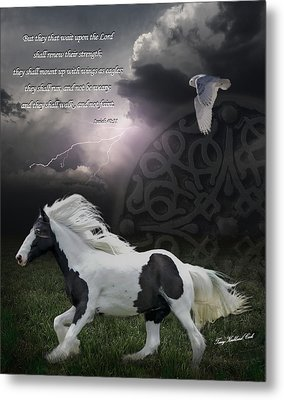 They Shall Run And Not Be Weary Metal Print by Terry Kirkland Cook