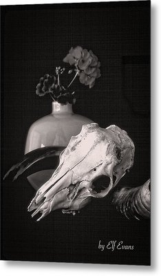 Metal Print featuring the photograph Thinking Of Georgia O'keeffe by Elf Evans