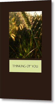 Thinking Of You Metal Print by Mary Ellen Frazee