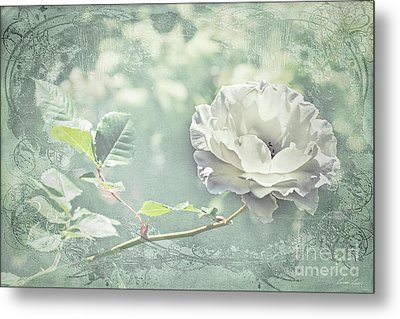 Metal Print featuring the photograph Thoughts Of You by Linda Lees