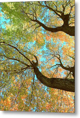 Thousands Of Voices Metal Print