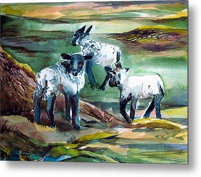 Three Lambs Metal Print by Mindy Newman