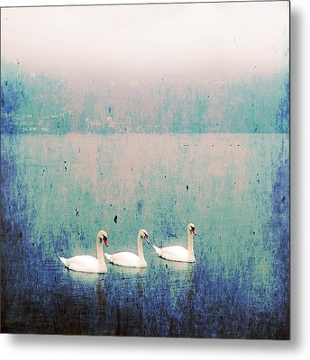 Three Swans Metal Print by Joana Kruse