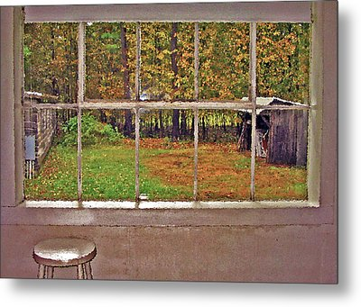 Through The Glass Metal Print by Steve Ohlsen