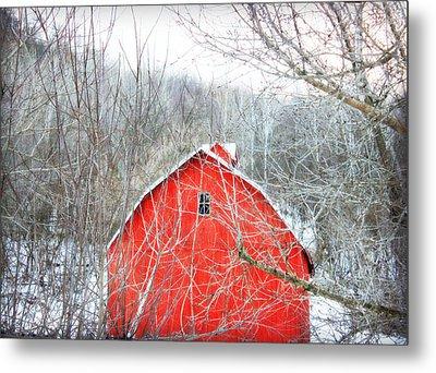 Through The Woods Metal Print by Julie Hamilton