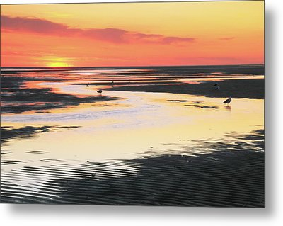 Tidal Flats At Sunset Metal Print by Roupen  Baker
