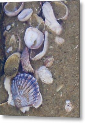 Tidal Pool - Brant Point - Nantucket Metal Print by Henry Krauzyk