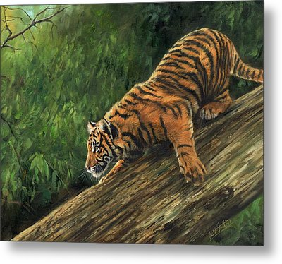 Metal Print featuring the painting Tiger Descending Tree by David Stribbling