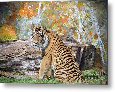 Tiger In Spring Metal Print by Judy Kay